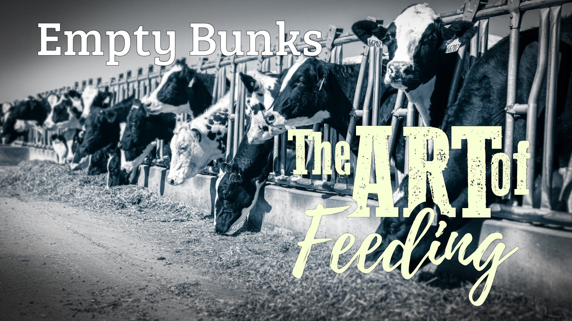 The Art of Feeding: Empty Bunks