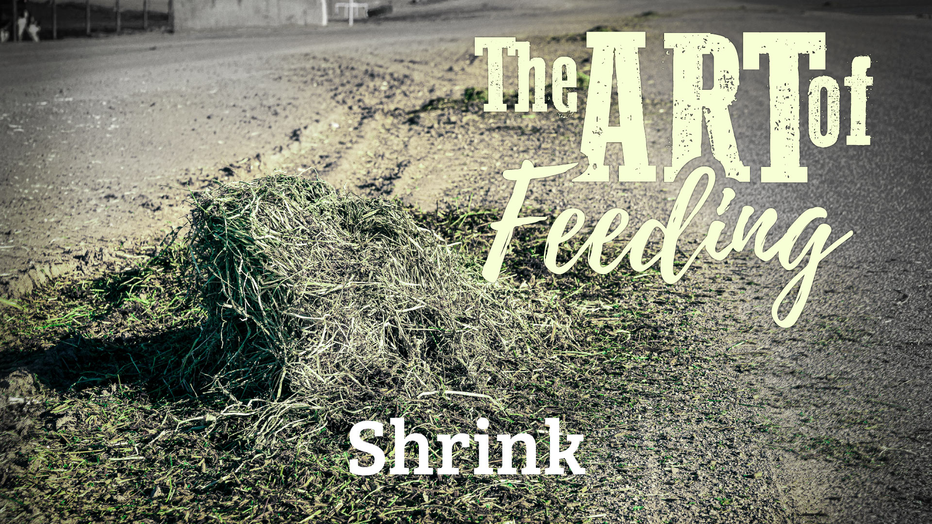 The Art of Feeding: Shrink