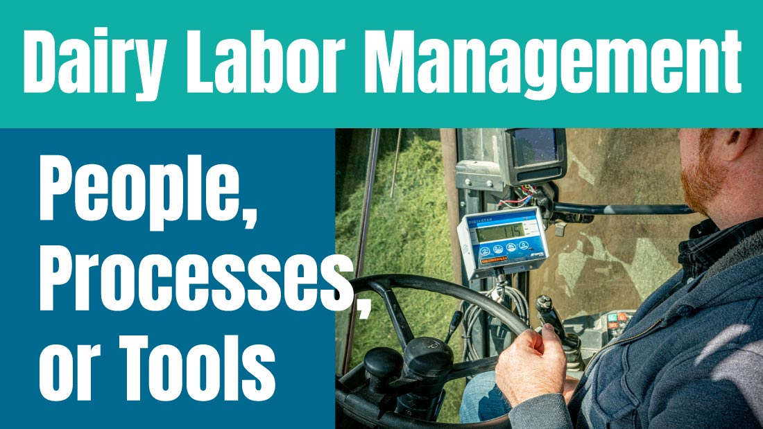 Dairy Labor Management: People, Processes, or Tools