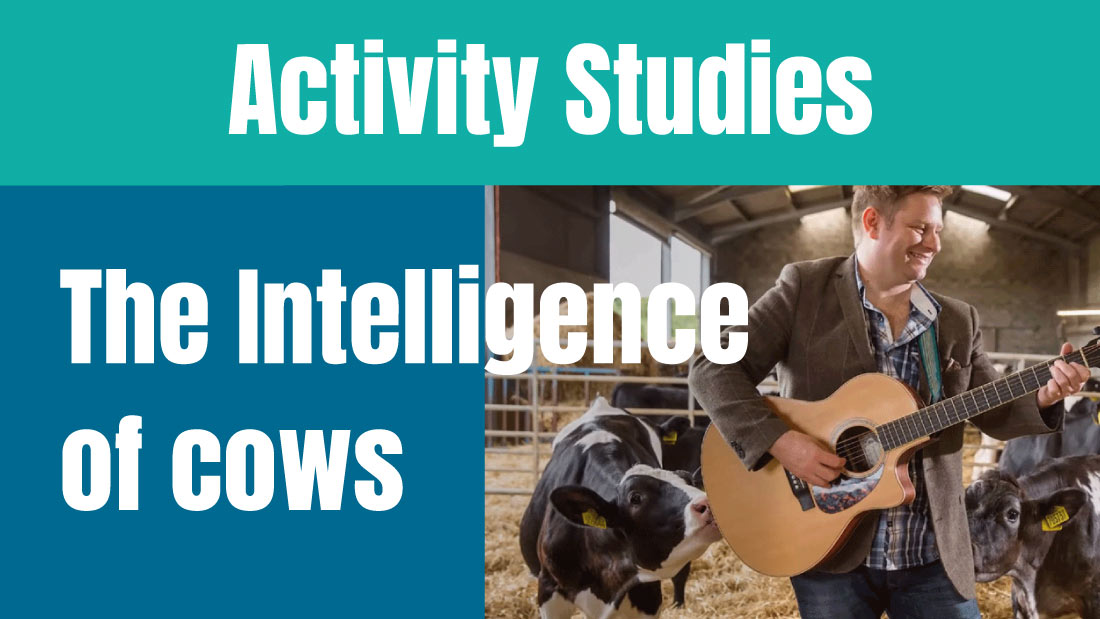Activity Studies: The Intelligence of Cows