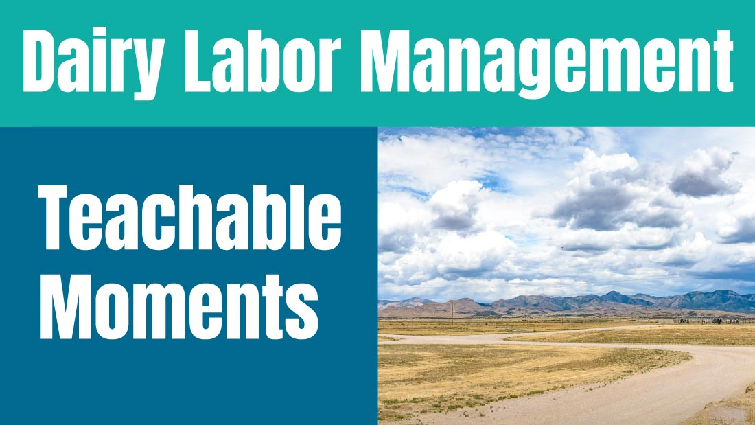 Dairy Labor Management: Teachable Moments