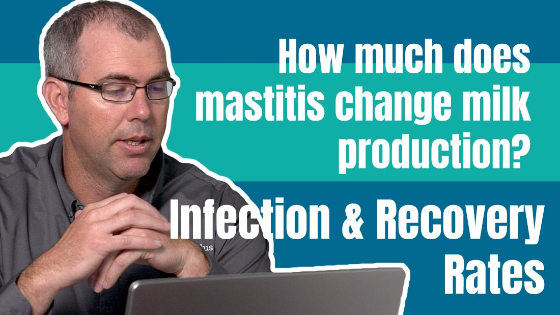How does mastitis change milk production? Infection and Recovery Rate Analysis.