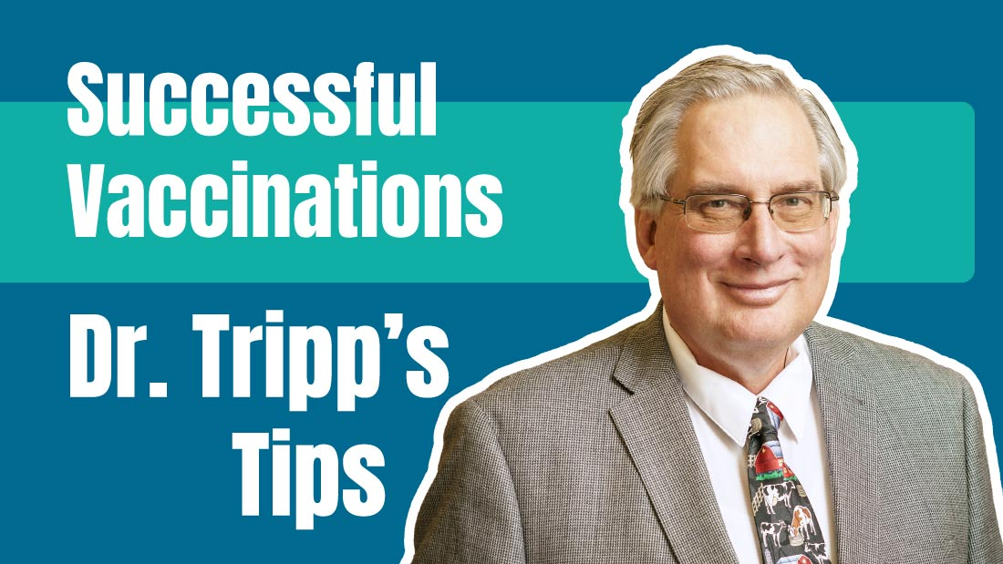 Successful Vaccinations by Dr. Tripp